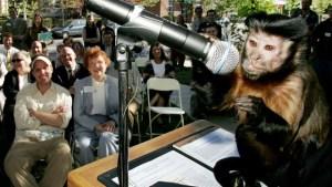 La gente hace las mismas decisiones básicas de inversión que los monos, afirman científicos