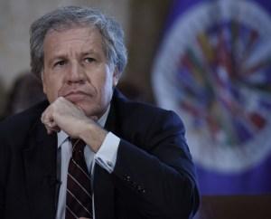 OEA expresó su preocupación tras el cambio inexplicable en los resultados electorales de Bolivia