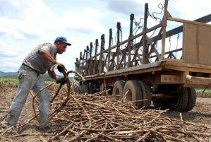 Importaciones y falta de gasoil golpea a cañicultores en Venezuela