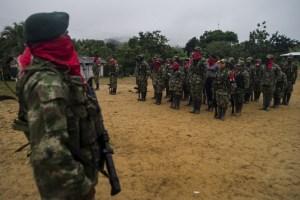 Conflictos armados se recrudecen en varias zonas de Colombia por la pandemia