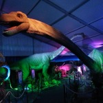 """Dinosaurs Jurassic Adventure, The exhibition"" , imagen cortesía."