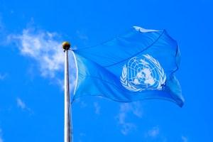 Tráfico de fauna silvestre favorece nuevas enfermedades infecciosas, afirma la ONU