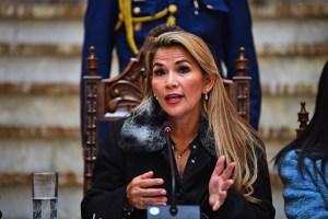 Áñez defiende que el informe de la OEA justifica nuevos comicios en Bolivia