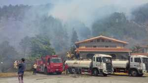 Continúan los devastadores incendios forestales en Mérida #14Feb (fotos)