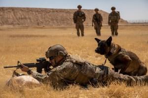 Brigada del Ejército de EEUU llegará a Colombia para apoyar en la lucha contra el narcotráfico