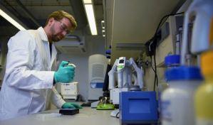 Identifican 28 anticuerpos capaces de neutralizar al coronavirus