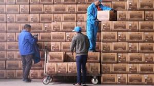 Encuentran más de 5.000 perros, gatos, conejos y otras mascotas muertas en cajas en un depósito de logística en China