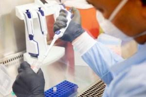 Nueva cepa de Covid-19 identificada en EEUU podría ser la más contagiosa