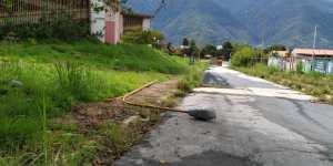 Cayó poste eléctrico en la Universidad de Los Andes por la desidia chavista (FOTOS) #14Abr