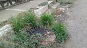 Colapso en sistema de aguas servidas compromete a los habitantes de Guárico (Video)