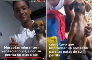 Emigrante venezolano que caminó 60 días junto a su perra para llegar a Ecuador