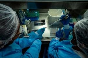 """""""Supercélulas"""" fabricantes de virus: La teoría sobre cómo se propagan las variantes contagiosas del Covid-19"""