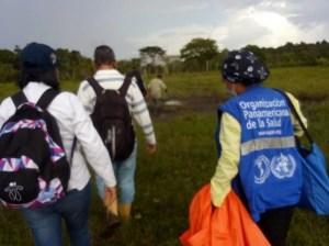 Falta de insecticidas en Venezuela frena fumigaciones contra mosquito de la fiebre amarilla